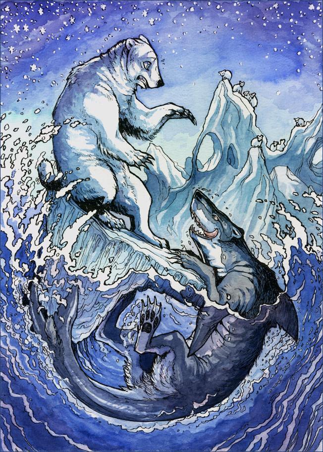 "!Shark Bear"" by Minna Sundberg"
